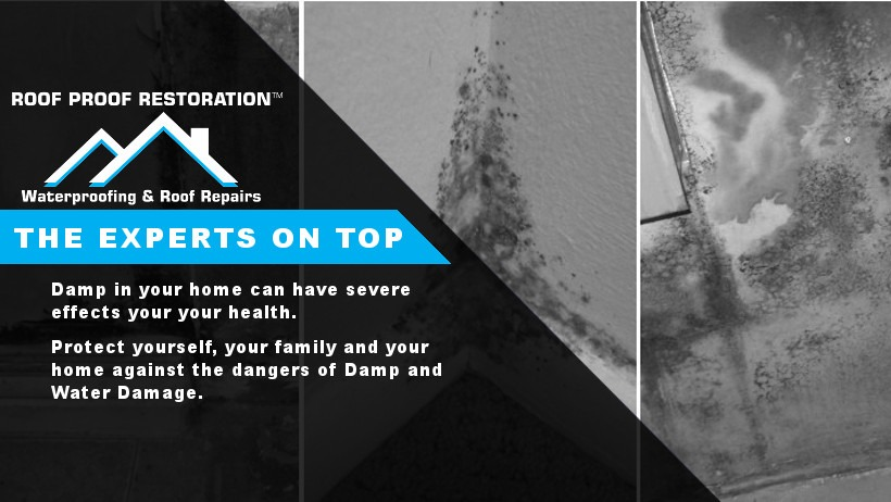 Risks-of-Damp